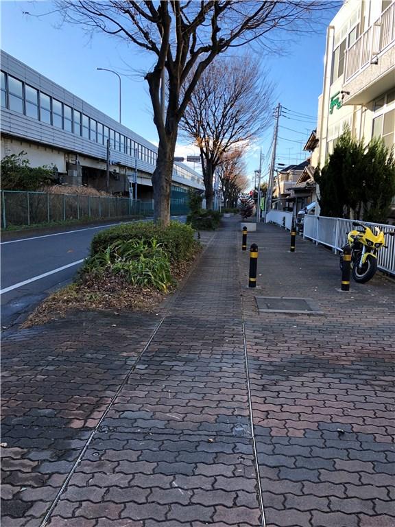 枯れ葉が集まってスッキリした社屋前歩道